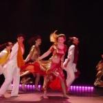 2015-danses-du-monde-2014-11